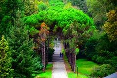 Ataturk Arboretumu Ä°stanbul Στοκ Εικόνες