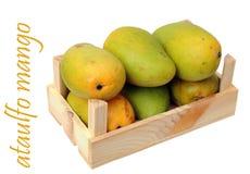 Ataulfo-Mango Stockbild