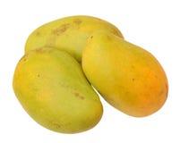 Ataulfo mango Royalty Free Stock Images