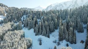 Ate completely covered with snow. Snow fairy tale in the mountains. Clouds, sun and blue sky. Snow on the mountains and the forest. Coniferous trees in the stock image