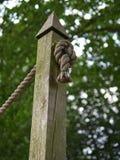 Ate a corda amarrada a um polo de madeira em uma floresta imagens de stock