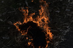 Ateie fogo acima Fotografia de Stock Royalty Free