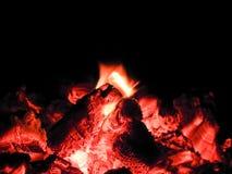 Ateie fogo a uma fogueira pequena imagem de stock royalty free