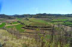 Atel-Hügel von Siebenbürgen Rumänien Stockfotografie
