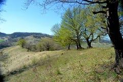 Atel-Hügel von Siebenbürgen Rumänien Stockfotos