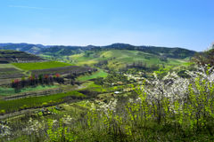 Atel.Un village in Transylvania Romania Stock Image