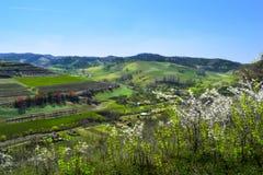 Atel UNO-Dorf in Siebenbürgen Rumänien Stockbild