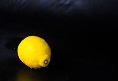 Atelieraufnahme der einzelnen Zitrone Stockfotografie