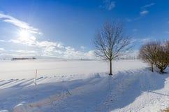 Atemberaubende Ansichten des schneebedeckten Feldes und der Bäume Lizenzfreie Stockbilder