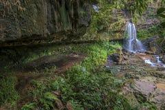 Atemberaubende Szene mit der Höhle unter moosigem Wald stockfotografie
