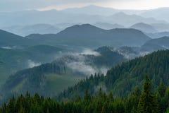 Atemberaubender Panoramablick von ausgezeichneten nebeligen Karpatenbergen, umfasst mit immergrünem Wald auf nebelhaftem ruhigem  stockbild