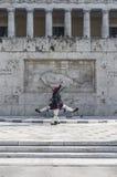 Evzones (protetores presidenciais do ceremonial) de Greece Foto de Stock