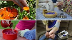 Atención sanitaria de la mujer del herborista Collage video almacen de metraje de vídeo