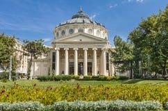 Ateneu romeno Imagens de Stock