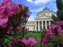 Ateneul romare Arkivfoto