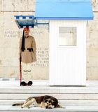 ATENY GRECJA, LIPIEC, - 21, 2017: Ceremonialni odmienianie strażnicy w Ateny Fotografia Stock