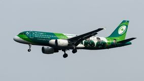 Aterrissagem de Air Lingus Airbus A320 no aeroporto de Heathrow Imagem de Stock