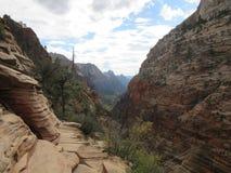 A aterrissagem do ` s do anjo que caminha o trajeto, Zion National Park, Utá Imagem de Stock