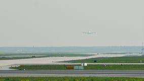 Aterrissagem grande do plano do pássaro no aeroporto de Francoforte, FRA