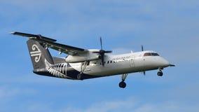Aterrizaje de aviones del turbopropulsor Q300 de la rociada 8 del bombardero de Air New Zealand en el aeropuerto internacional de Foto de archivo libre de regalías