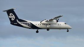 Aterrizaje de aviones del turbopropulsor Q300 de la rociada 8 del bombardero de Air New Zealand en el aeropuerto internacional de Imágenes de archivo libres de regalías