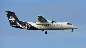 Aterrizaje de aviones del turbopropulsor Q300 de la rociada 8 del bombardero de Air New Zealand en el aeropuerto internacional de Fotografía de archivo
