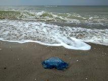 aterrizaje de las medusas fotos de archivo libres de regalías