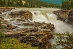 Athabasca下跌贾斯珀国家公园 库存图片