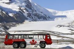 athabasca公共汽车探险家冰川冰 库存图片