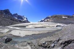 Athabasca冰川在贾斯珀国家公园,亚伯大,加拿大 库存照片