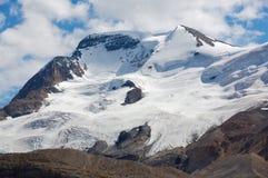 athabasca冰川挂接 库存图片