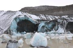 Athabasca冰川脚趾 库存照片