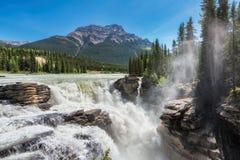Athabasca在贾斯珀国家公园下跌 免版税库存照片