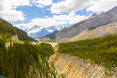 athabasca河和冰川视图哥伦比亚icefield 免版税库存图片