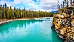 Athabasca河的绿松石水 库存照片