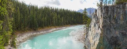Athabasca的更低的河在贾斯珀国家公园,加拿大落 免版税库存图片
