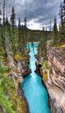Athabasca понижается каньон стоковое изображение rf