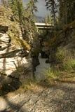 Athabasca cade in diaspro Fotografie Stock Libere da Diritti