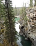 Athabasca canyon. Wonderful view of the path the water takes, showing the layers of rock royalty free stock images