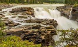 Athabasca fällt in Jaspis lizenzfreies stockfoto