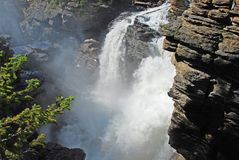 Athabasca Fall Royalty Free Stock Image