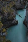 Athabasca faller i Jasper Royaltyfria Foton