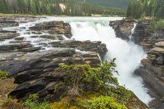 Athabasca faller i Jasper Fotografering för Bildbyråer