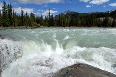 Athabasca faller, kanadensiska steniga berg, Kanada Royaltyfria Bilder