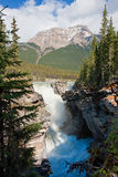 Athabasca Falls Royalty Free Stock Photography