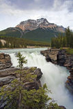 Athabasca Falls. In Jasper, Alberta, Canada stock photo