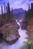Athabasca Falls. While just 23 meters high, is a force of nature to be reckoned with. Located within Jasper National Park, Alberta, Canada, water-rafting trips royalty free stock photography