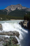 Athabasca Falls. Are situated between Banff and Jasper along the Icefields Parkway in the Canadian Rockies Royalty Free Stock Photography
