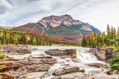 Athabasca Falls in Autumn Colors at Jasper National Park. On the Icefields Parkway in Alberta, Canada, with Mount Kerkeslin in the background royalty free stock photography