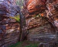 Athabasca Falls Canyon Stock Images